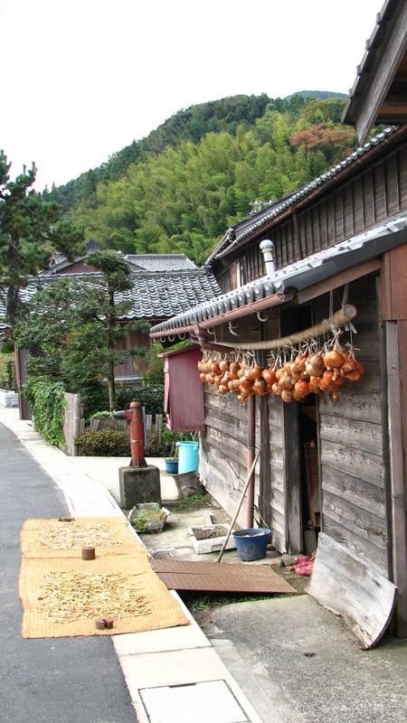 séchage récolte potager Japon