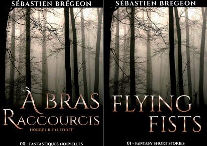 Couvertures des livres Flying fists et à bras raccourcis